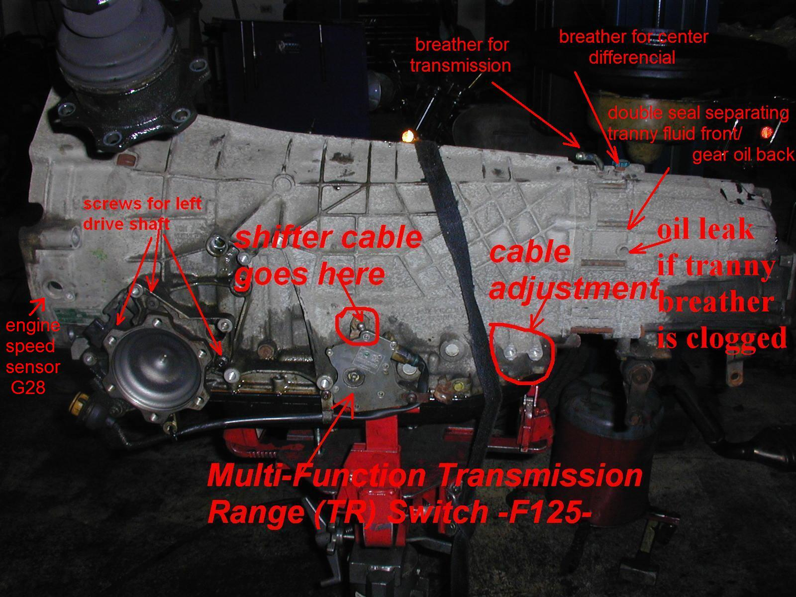 Crankshaft Positioning Sensor Location Audiworld Forums